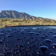Rain drops on the roof of Carly\'s car.