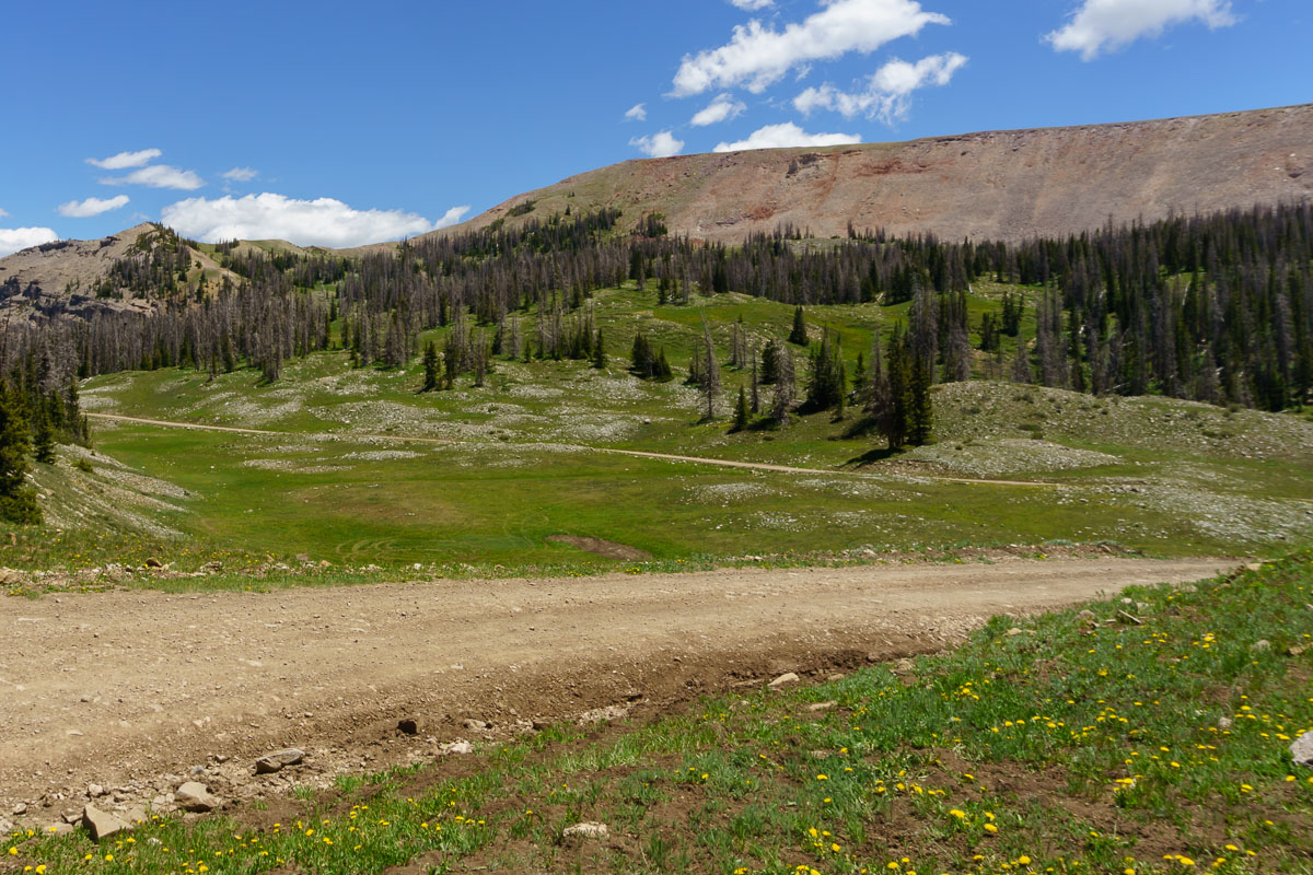The beautiful high alpine pass and meadow.
