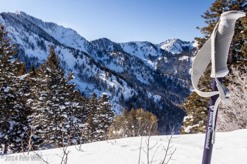 Enjoying the view on a bluebird but crisp New Year's Day ski tour.