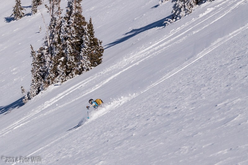 """Settled powder, but about 12\"""" deep for the most part."""