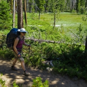 The five mile hike in was largely flat meandering through pine forests and the occasional meadow.