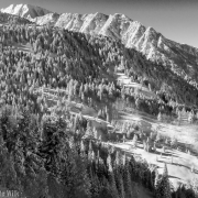 Fresh snow in the Wasatch.