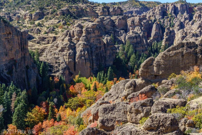 Maple Canyon in the fall.