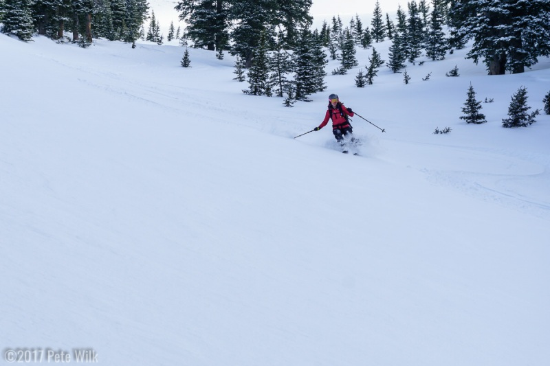 We opted for a run called the Funnel and it was fabulous.  First tracks and soft snow.