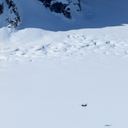Low and slow flight over the glacier.  We are approximately 2,000 feet above them at this point.