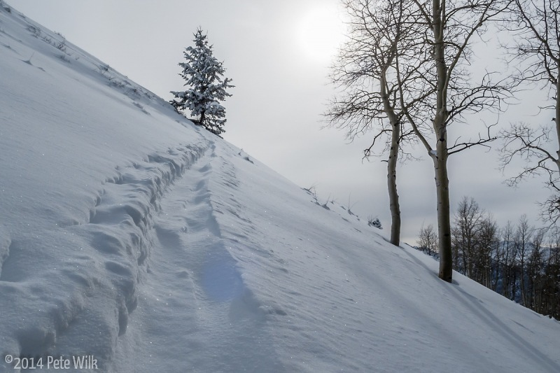Following up a drifted skin track.