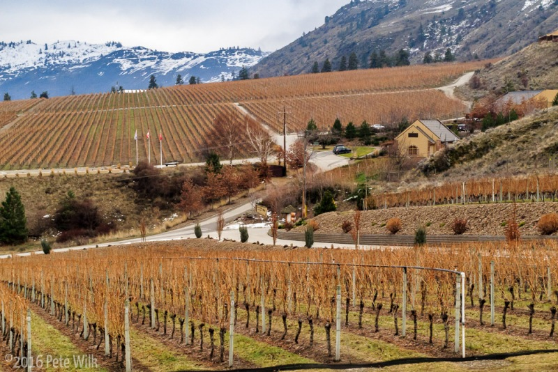The Gehringer Brothers Winery in Oliver.  The woman who gave us our tasting (at 10am on a Wednesday) was really nice and gave us all lot of info (and wine) about the area.