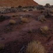 2012-12-01_13392--13394-HDR