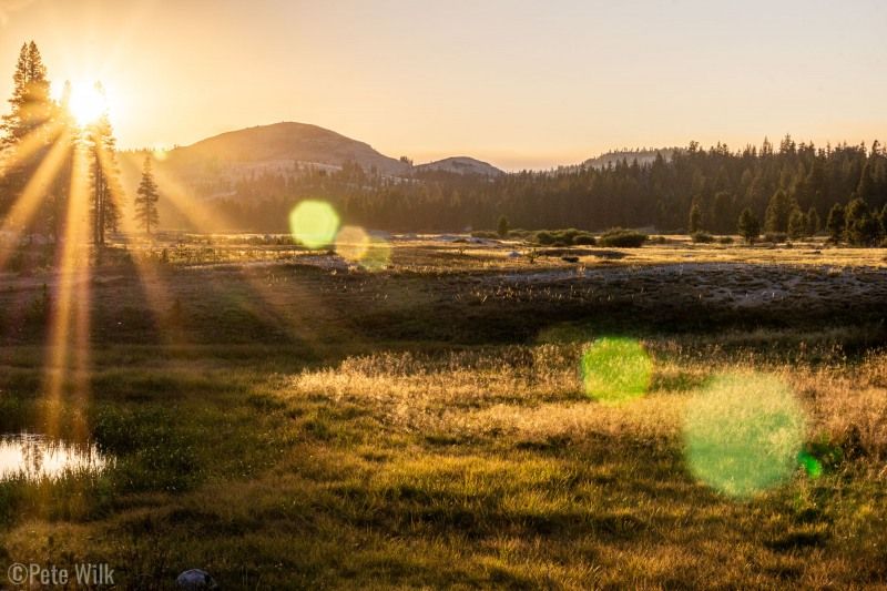 Our 15 minutes in Yosemite.  Apparently you need a reservation just to drive into Tuolmne and Yosemite.  Who knew and for Christ's sake, WHY?  Since it was a weeknight and the gate was unmanned, we drove through anywhy to check out the sunset.