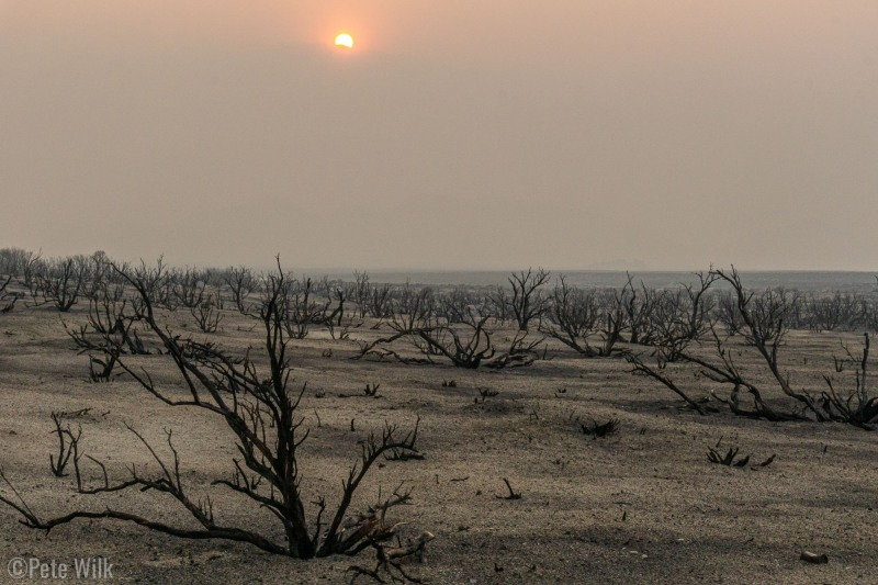 Post apocalyptic landscape if I've ever seen one.  New smoke in the area along with a recent fire.